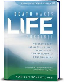 Book cover for Death Makes Life Possible